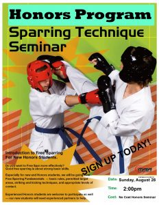 Sparring Seminar Flyer August 2016